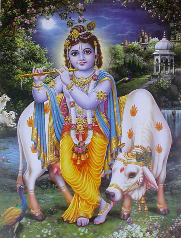 Krishna playing flute with cow